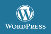 make a professional and responsive wordpress website