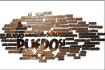 create a WORDCLOUD for you