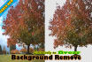 change or remove any background professionally in just 24 hours