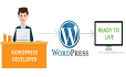 do WordPress Installation and Theme Customization