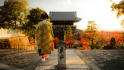 plan your Japan travel itinerary