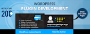 professional and Responsive WordPress website