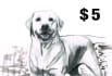 draw a portrait , drawing of your pet or animal