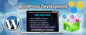 do create a website in wordpress and solved wordpress issued