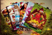 design amazing flyer business cards and post cards