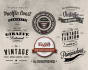 design Unique Retro,Vintage Logo  For your Company or Brand