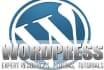 customize any kind of wordpress theme for usd XX