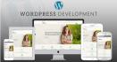 build professional wordpress website or blog