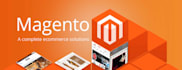 fix or customize your Magento and Shopify estore site