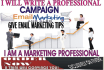 write a professional design emails for your email marketing campaign