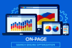 preform professionally on page optimization on your website