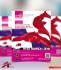 design Professional BUSINESS Flyer or Brochure