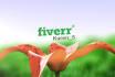 create Beautiful Growing Flower video intro