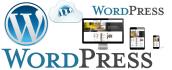 create and set up WordPress website