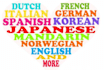 professionally translate ANY language to English for you