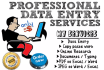 do 3 hours copy paste data entry   job