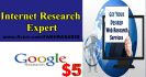 do Internet Research, Market Research,Web Research