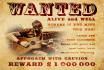 make a WANTED poster with your picture