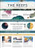 create unique INFOGRAPHIC, Awesome info Graphics