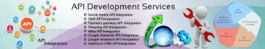 develop and integrate APIs in your website professionally