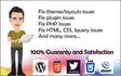 fix wordpress errors or wordpress issues in 24 hrs