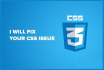 fix any css or responsive issue