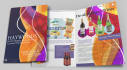 design Stunning Brochure just in 20 hr with unlimited revision