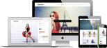 customize And Make Professional WordPress site