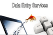 do accurate and quick Data Entry for any business or site