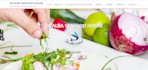 create a website for your restaurant