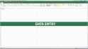 do any type of data entry fast and without mistakes