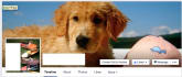 build you a professional Facebook page