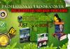 create professional eBook cover , magazine plus Bonus