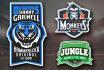 make a Logo for your Fantasy Football Team
