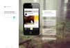 design A Responsive Pro Website