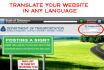 create a Website Translator for you
