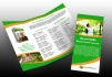 design a professional and clean trifold brochure