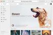 design a beautiful Google Plus cover and profile picture