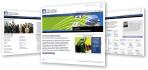 build great Responsive mobile friendly Wordpress website