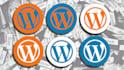 fix Wordpress error, customize wordpress theme and fix css issues