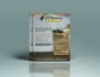 design a professional flyer