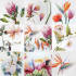 draw AMAZING watercolor flowers