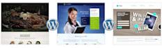 create responsive design wordpress website