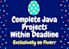 complete Java Projects and Assignments within DEADLINE