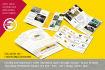 design eye catching brochure