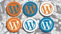 fix Wordpress issues, errors, and build sites