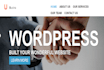 create customize,WordPress theme of your website
