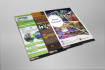 do amazing Flyers design for you