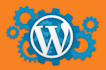 fix WordPress issues or errors in 24 hrs