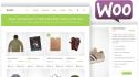 fix WordPress error,theme customizetion and fix CSS issue